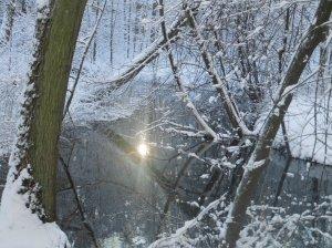 2014_12_29_Hainholz Winterbilder (13)