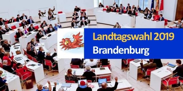 Landtagswahl 2019 Brandenburg_Banner