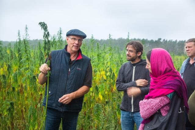 HanfbauerntagFeld