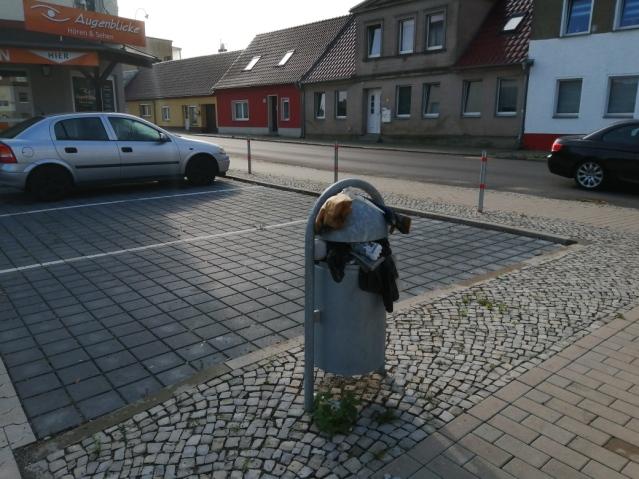 Mülleimer am Rewe (2)