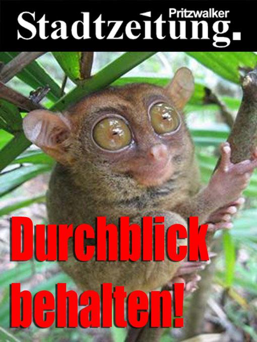 psz_durchblick-behalten-kopie