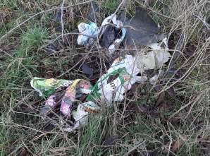 Müll_Weg nach Birkenfelde_01_A Linack