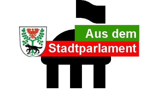 Parlament_Aus dem Stadtparlament-Schmal