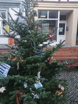 PSZ-Osterbaum zu Weihnachten 2019 (3)