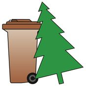 Weihnachtsbaum abholen_02