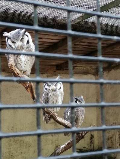 2020_05_17_Tierpark Perleberg_10
